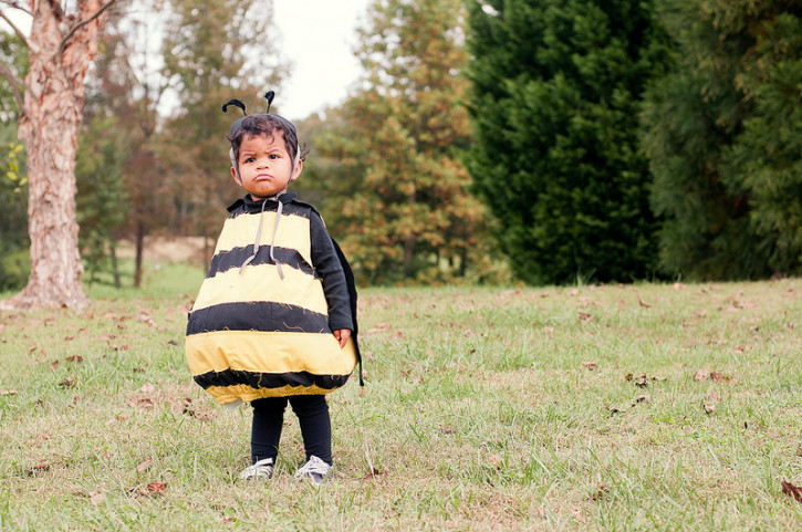 bumblebee and bee keeper halloween costumes from the cottage mama wwwthecottagemamacom
