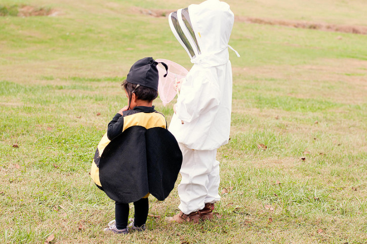 Bumblebee and Bee Keeper Halloween Costumes from The Cottage Mama. www.thecottagemama.com