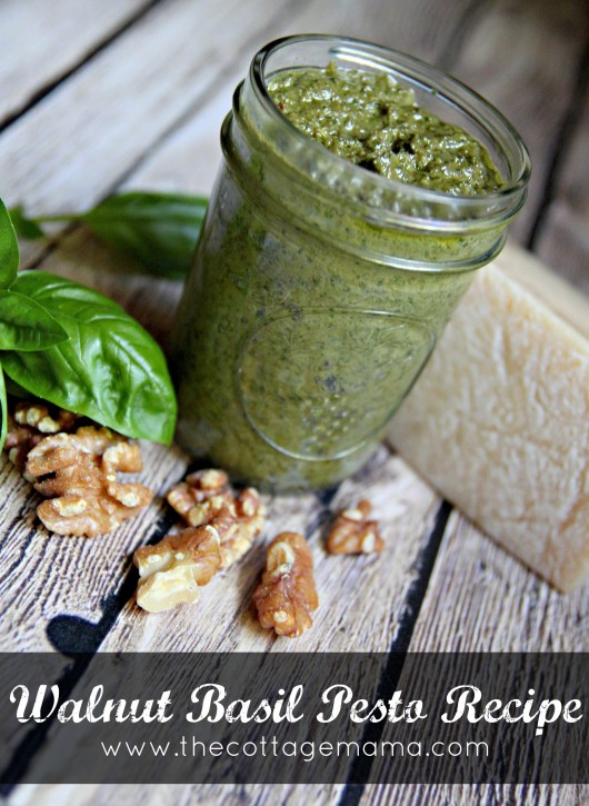 Walnut Basil Pesto Recipe by Lindsay Wilkes from The Cottage Mama. www.thecottagemama.com