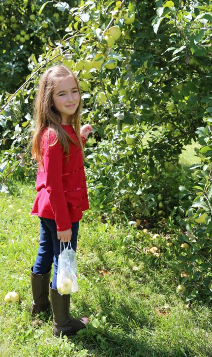 The Cottage Mama Apple Picking 2016