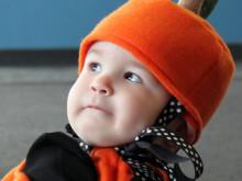 Two Little Pumpkin Heads