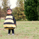 Bumblebee and Bee Keeper Halloween Costume Tutorial. www.thecottagemama.com