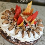 Campfire Birthday Cake - Ice Cream Cookie Cake from The Cottage Mama. SO cute!!